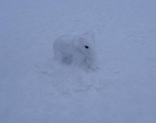Someone made an elephant out of snow - Quelqu'un avait fait un éléphant en neige