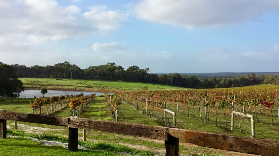 Margaret River winery