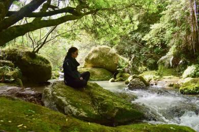 Tangoio Falls Scenic Reserve