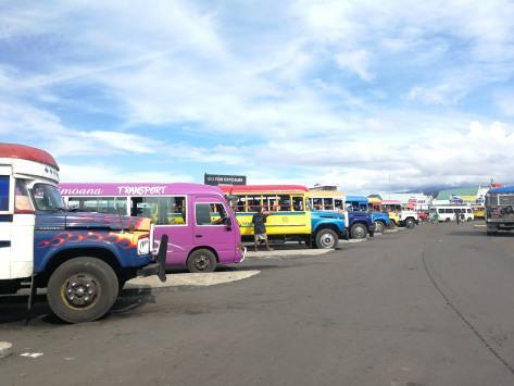 Samoa buses